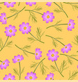 pink cosmos flower on yellow background vector image