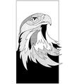 sketch eagle head vector image vector image