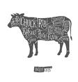 Vintage butcher cuts of beef scheme vector image vector image