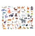 big set world animal species cartoon vector image vector image
