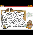 maze activity with mole animal vector image vector image