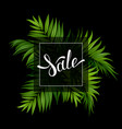 sale banner with tropical palm leaves on the black vector image vector image