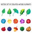 Vintage flowers fruits and leaves icons collection vector image vector image