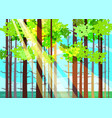 beautiful spring forest trees green foliage vector image vector image
