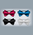 bow tie set realistic knot silk bow vector image