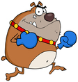brown bulldog boxer with red gloves vector image vector image