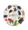cartoon animals america banner vector image