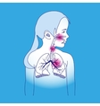 Child Respiratory Scheme vector image vector image