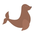 seal animal icon vector image