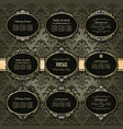 vintage golden frames and labels set on damask vector image vector image