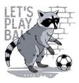 athletic raccoon 002 vector image