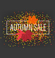autumn sale banner with confetti and maple leaves vector image vector image