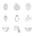 berries icon set outline style vector image vector image