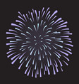 firework on night background anniversary bursting vector image vector image