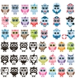 funny colorful owls and isolated on white vector image vector image