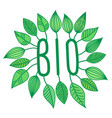 green bio sign in with growing leaves vector image vector image