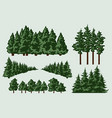 green trees composition vector image vector image