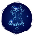 round zodiac sign taurus vector image vector image