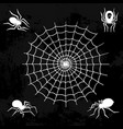 spiders web silhouette spooky spider nature vector image vector image