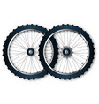 two bicycle wheels vector image vector image