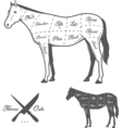 butchers cuts horse diagram vector image vector image