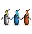 Penguin collection animal icon set of wild bird vector image