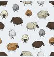 seamless stylized sheep herd print vector image vector image