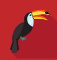 toucan cartoon flat icon brazil vector image vector image