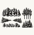 vintage concept forest trees vector image vector image
