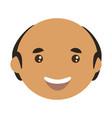 adult male bald head vector image vector image
