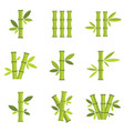 bamboo icons set isolated on white vector image