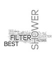 best shower filter for good health and skin text vector image vector image