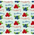 Cranberry and blueberry seamless pattern 6 vector image vector image