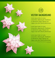 decorative flowers background vector image vector image