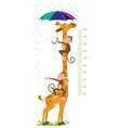 Giraffe and monkeys Meter wall or height chart vector image vector image