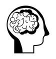 contour man with anatomy brain design vector image