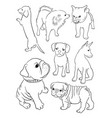dog line art vector image vector image
