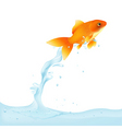 goldfish leaping out of water vector image vector image
