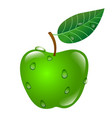 green apple with sprig and leaf and dew isolated vector image vector image