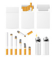 realistic cigarette and accessory set vector image vector image