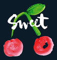 Sweet cherry print for shirts vector image vector image