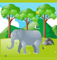 scene with elephant and bird in the field vector image