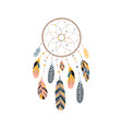 dream catcher with feathers jewels and colorful vector image