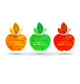 empty frame apples with place for text on a black vector image vector image