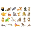 set of cats and dogs vector image vector image