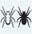 Tarantula spider vector image