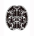 abstract top view of human brain vector image