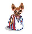 fashionable bag with a small dog vector image