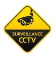 cctv sign video surveillance symbol vector image vector image