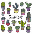collection hand drawn cactuses in sketch style vector image